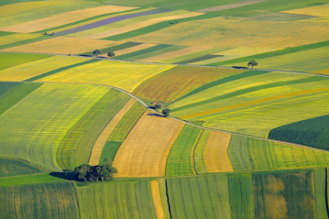 Precision Agriculture and the Future of Farming in Europe